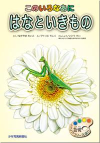 489_hyoushi