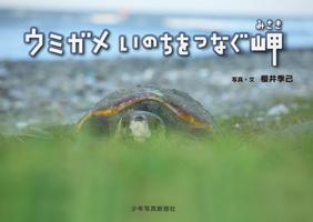 5279_hyoushi